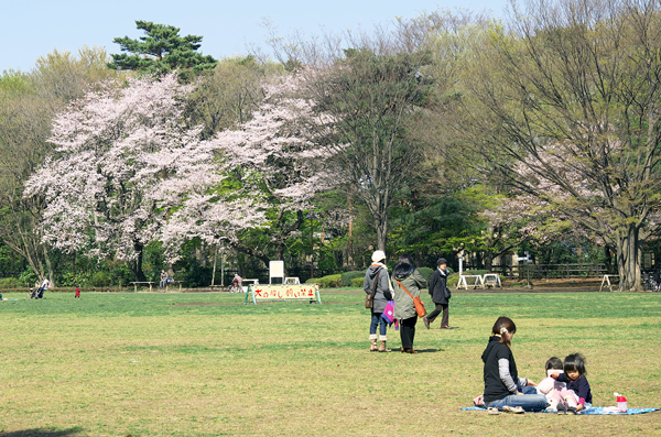 【吉祥寺】井の頭恩賜公園