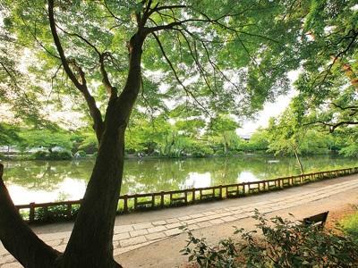 【練馬】石神井公園