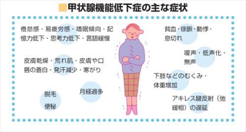 甲状腺ホルモンの異常と病気